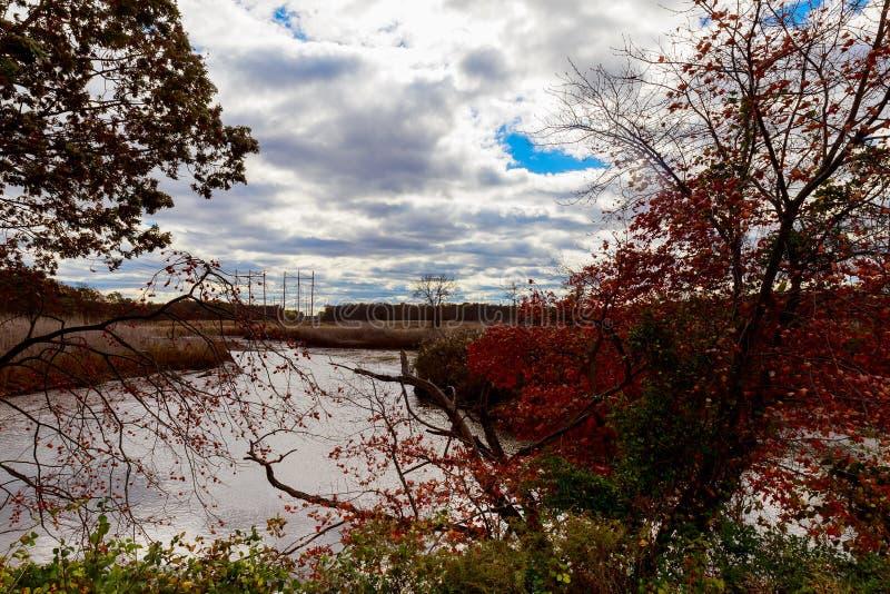 a paisagem do outono do rio e das ?rvores sem o c?u azul das folhas nubla-se em um dia ensolarado imagens de stock