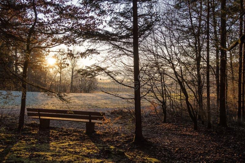 Paisagem do pôr do sol foto de stock
