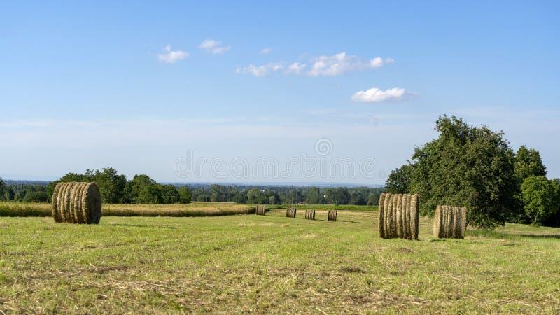 Paisagem do país perto de Boves, Piedmont imagem de stock royalty free