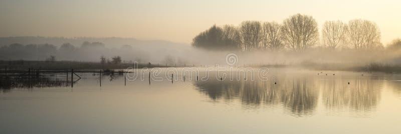 Paisagem do panorama do lago na névoa com fulgor do sol no nascer do sol fotografia de stock
