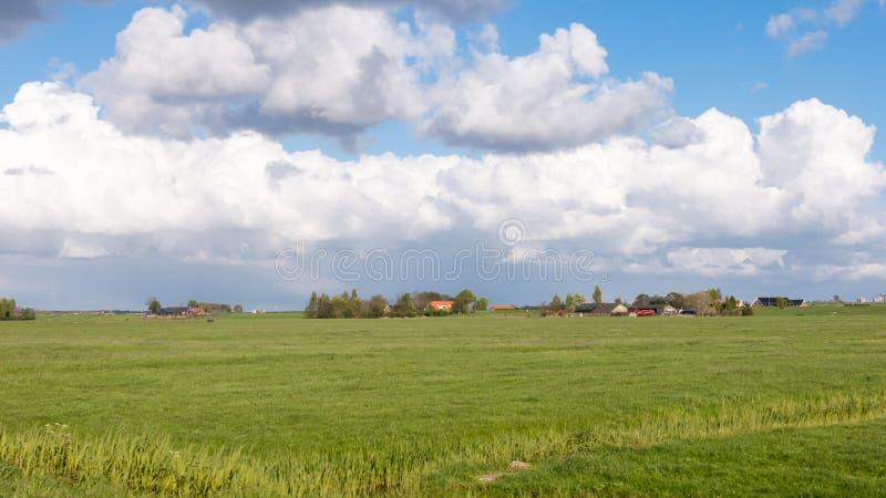 Paisagem do po'lder do cervo de Groene no Dutch Randstad, Holanda sul imagens de stock