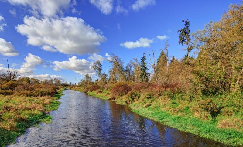 Paisagem do prado de um rio a um lago imagens de stock