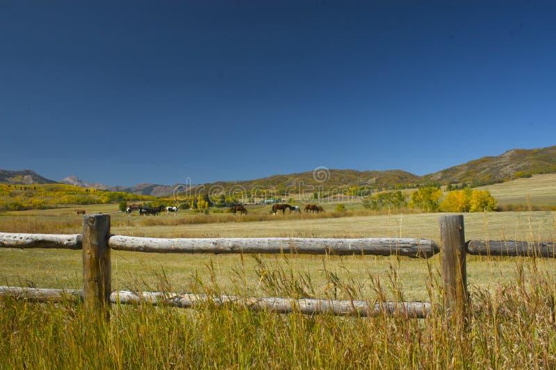 Paisagem do rancho da montanha da queda imagens de stock