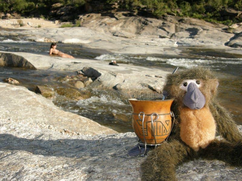 Paisagem do rio com a peluche que tem o companheiro, Mina Clavero, Córdova fotos de stock