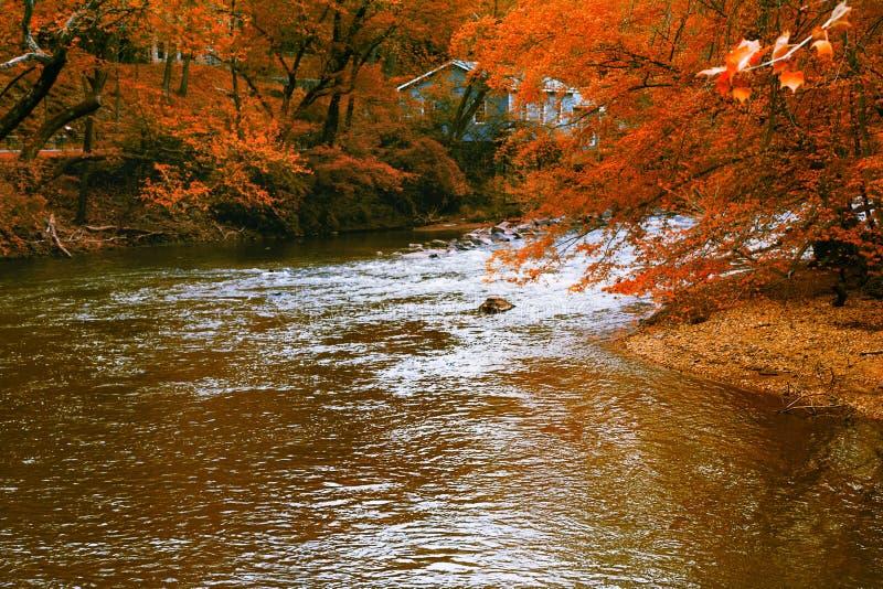 Paisagem do rio da floresta do outono com casa azul imagens de stock royalty free
