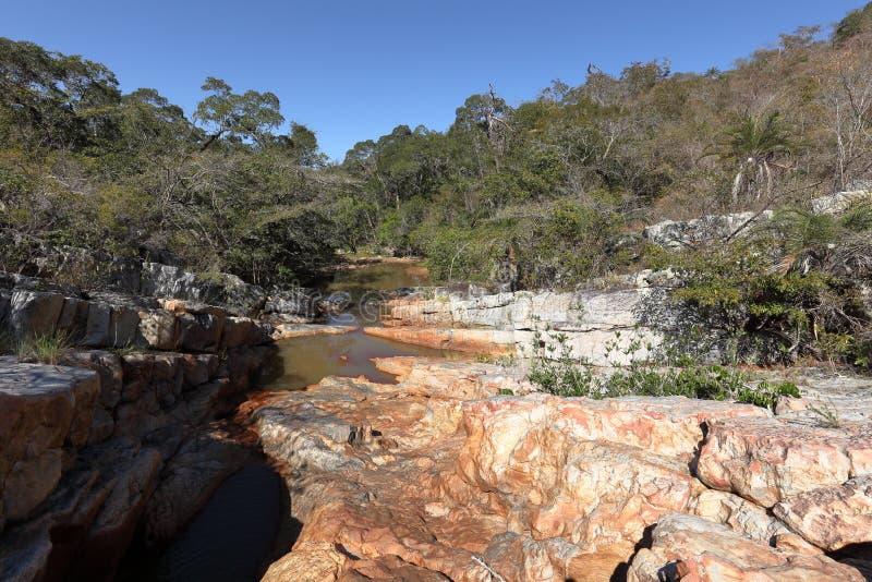 Paisagem do rio de Caatinga em Brasil foto de stock