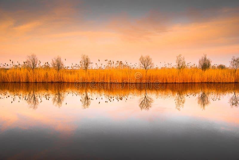 Paisagem do rio do delta de Danúbio imagens de stock