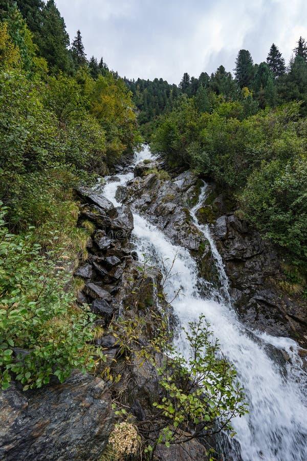 Paisagem do rio e das árvores da montanha Ambiente natural de Kaunertaler Gletscher Caminhando nos cumes, Kaunertal, Tirol, Áustr imagens de stock royalty free