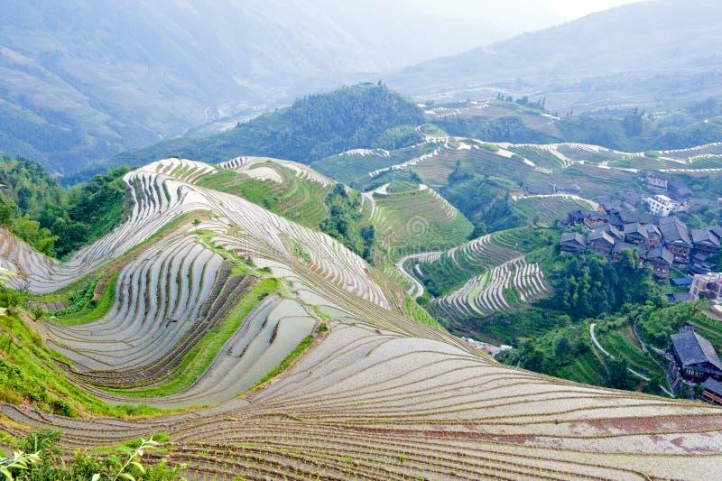 Paisagem do terraço do arroz em China imagens de stock