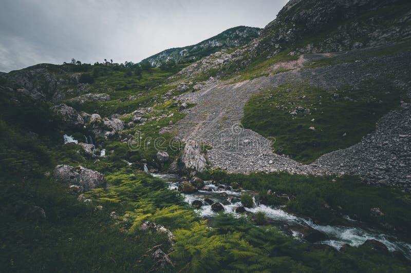 Paisagem do trajeto de River Valley da montanha imagens de stock