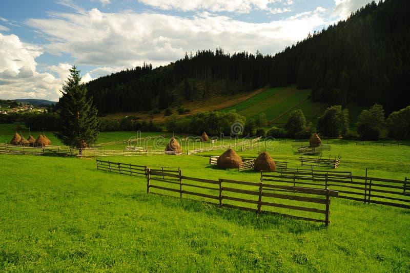Paisagem do vale da montanha fotografia de stock royalty free