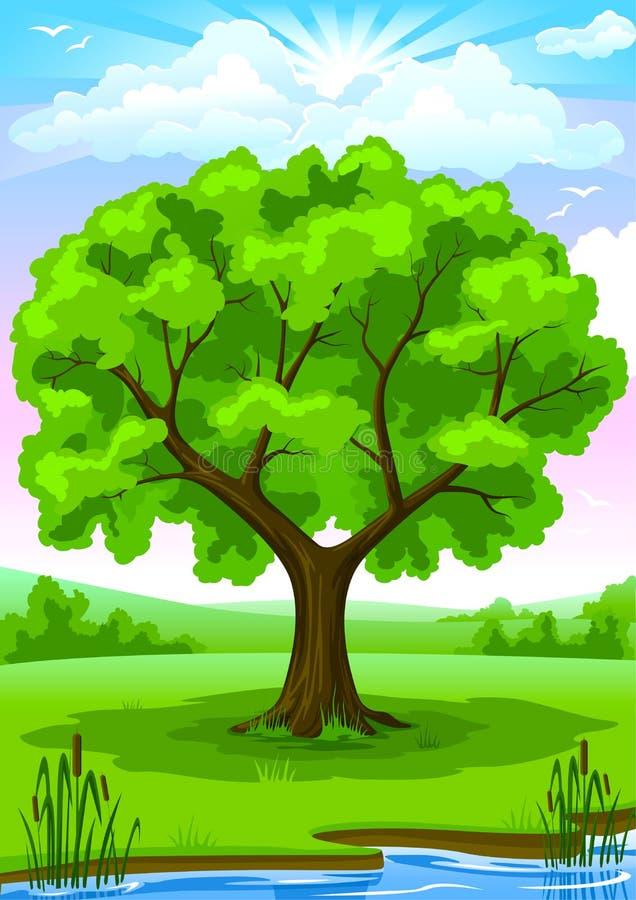 Paisagem do verão com árvore velha ilustração royalty free