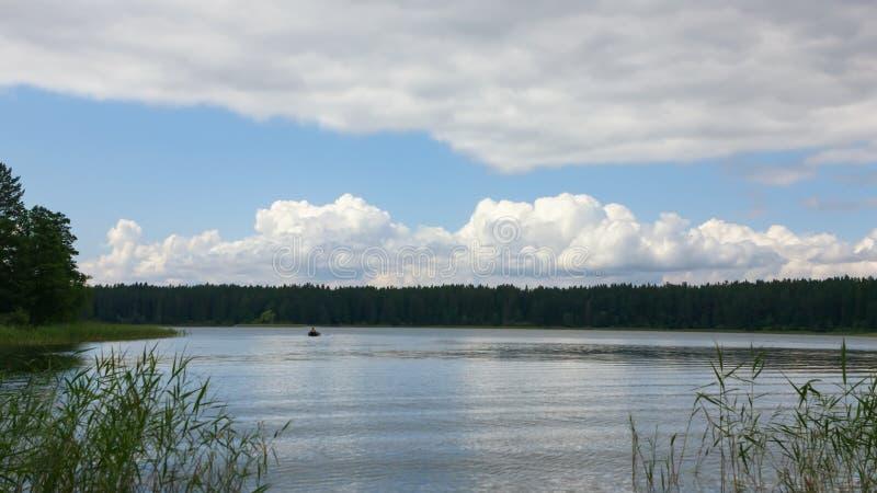 Paisagem do verão com as nuvens de cúmulo sobre Forest Lake fotos de stock