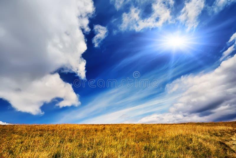 Paisagem do verão com campo da grama, do céu azul e do sol imagem de stock