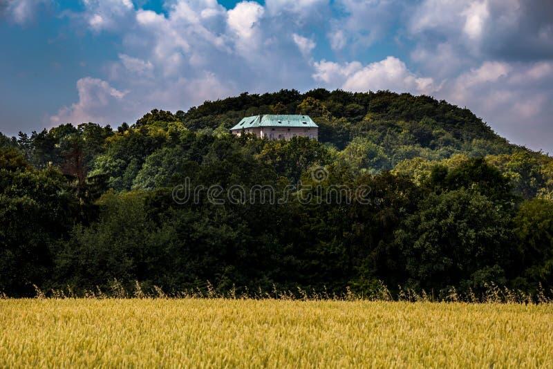 Paisagem do verão com castelo romântico fotografia de stock