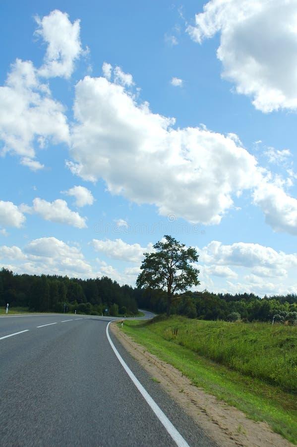 Paisagem do verão com estrada foto de stock royalty free