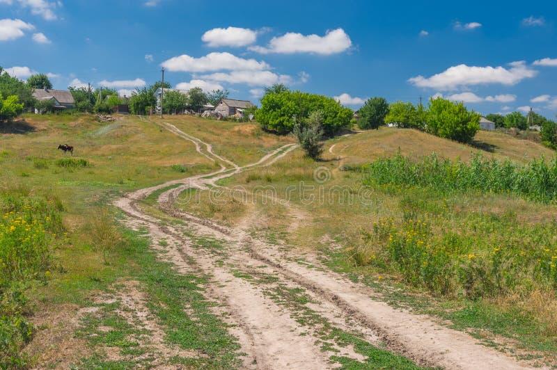 Paisagem do verão com a estrada secundária que conduz às casas do camponês imagens de stock