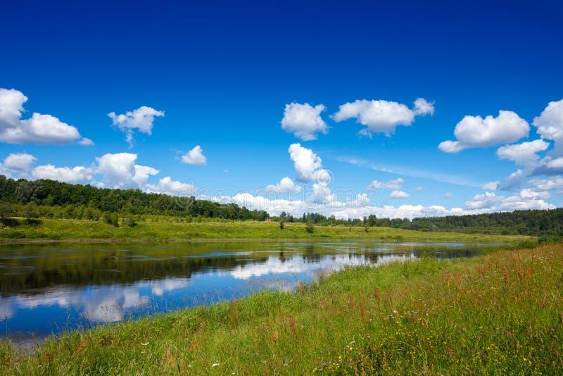 Paisagem do verão com prados, floresta, rio, o céu azul e a reflexão das nuvens brancas imagem de stock
