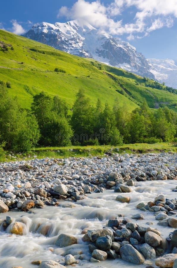 Paisagem do verão com um rio da montanha foto de stock royalty free