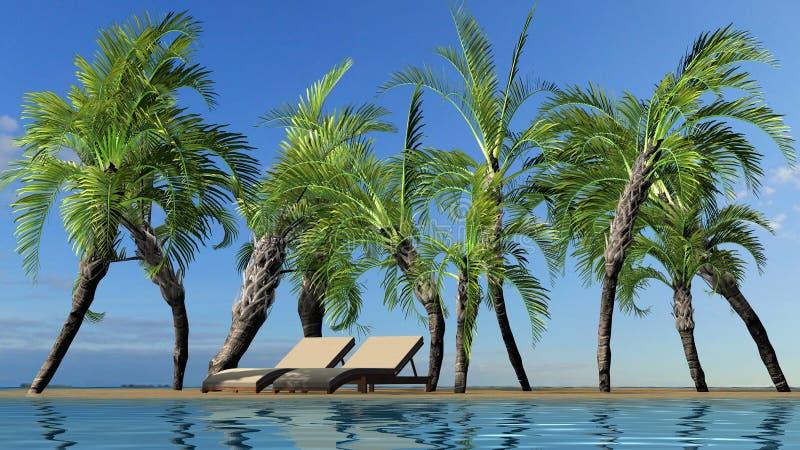 Paisagem do verão da ilha com palmeiras e cadeiras de plataforma contra o céu azul ilustração stock