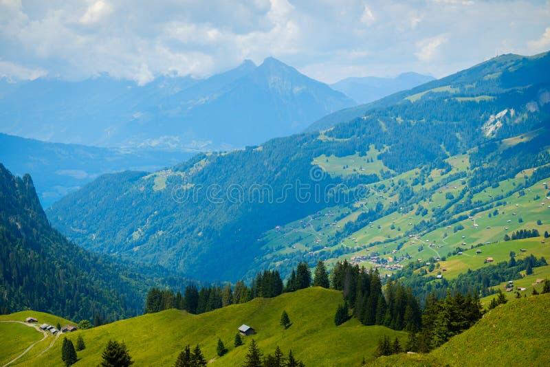 Paisagem do verão de montes verdes uma aldeia da montanha fotografia de stock royalty free
