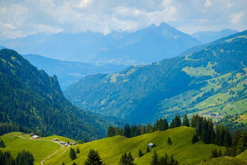 Paisagem do verão de montes verdes uma aldeia da montanha fotos de stock royalty free