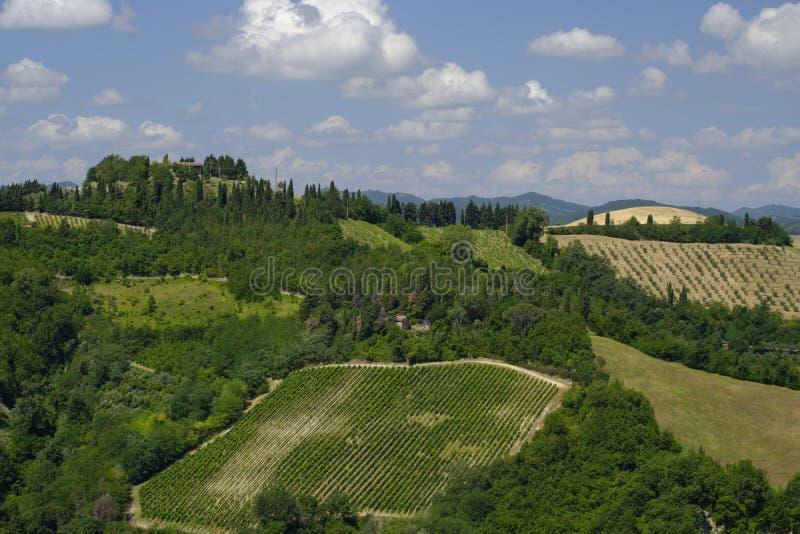 Paisagem do verão entre Brisighella e Modigliana Romagna, ele imagem de stock royalty free