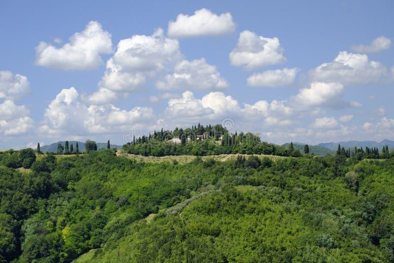 Paisagem do verão entre Brisighella e Modigliana Romagna, ele fotografia de stock royalty free
