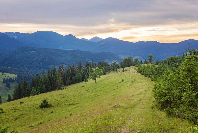 Paisagem do verão nas montanhas imagens de stock royalty free