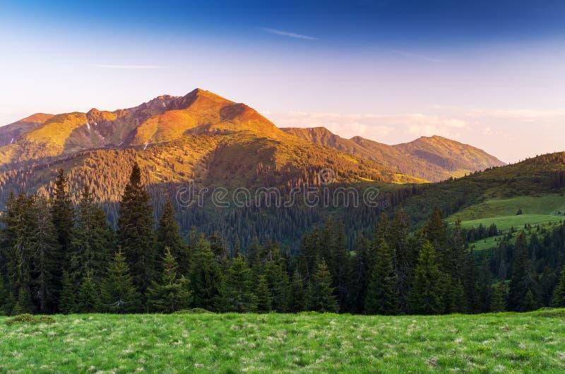 Paisagem do verão nas montanhas com um nascer do sol bonito fotografia de stock
