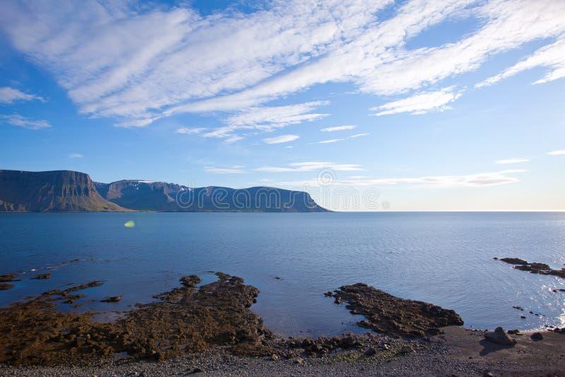Paisagem do verão nos fjords de Islândia foto de stock