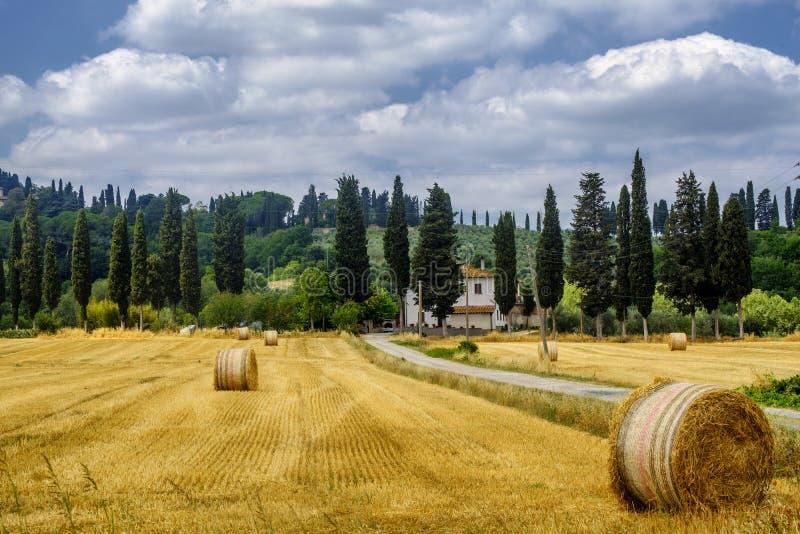 Paisagem do verão perto de Volterra, Toscânia imagens de stock
