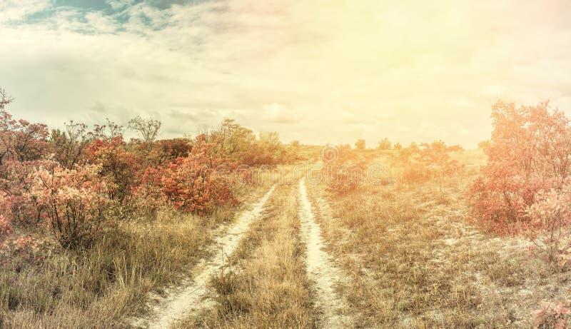 Paisagem do vintage com estrada rural foto de stock