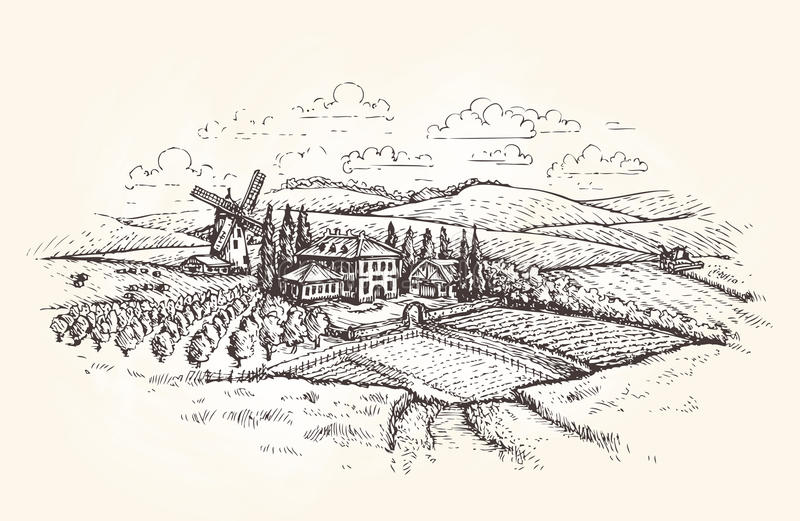 Paisagem do vintage Exploração agrícola, agricultura ou esboço do campo de trigo Ilustração do vetor ilustração royalty free