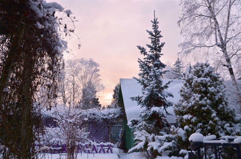 Paisagem do wintergarden fotos de stock royalty free