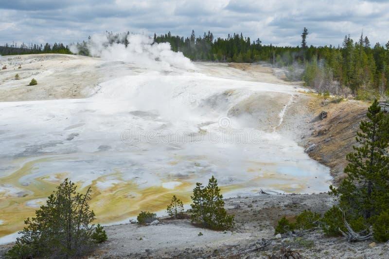 Paisagem dos geysers no parque nacional de Yellowstone imagens de stock