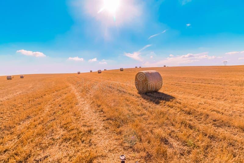 A paisagem dos pacotes de feno de campos de grama amarelos sob o céu azul com nuvens brancas, a agricultura e a natureza e relaxa fotos de stock royalty free