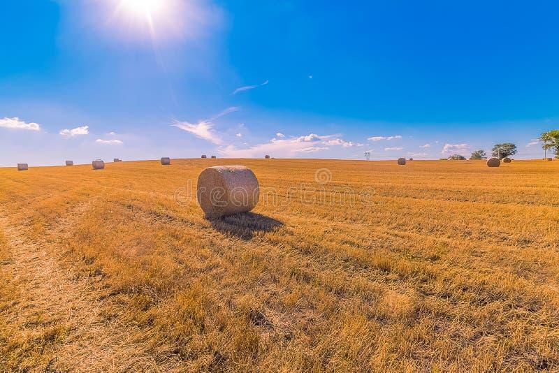Paisagem dos pacotes de feno de campos de grama amarelos sob o céu azul com w fotos de stock