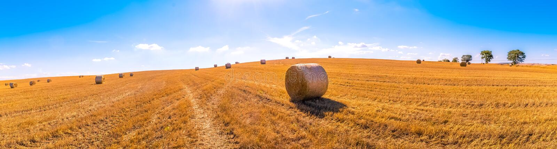 Paisagem dos pacotes de feno de campos de grama amarelos sob o céu azul com w foto de stock royalty free