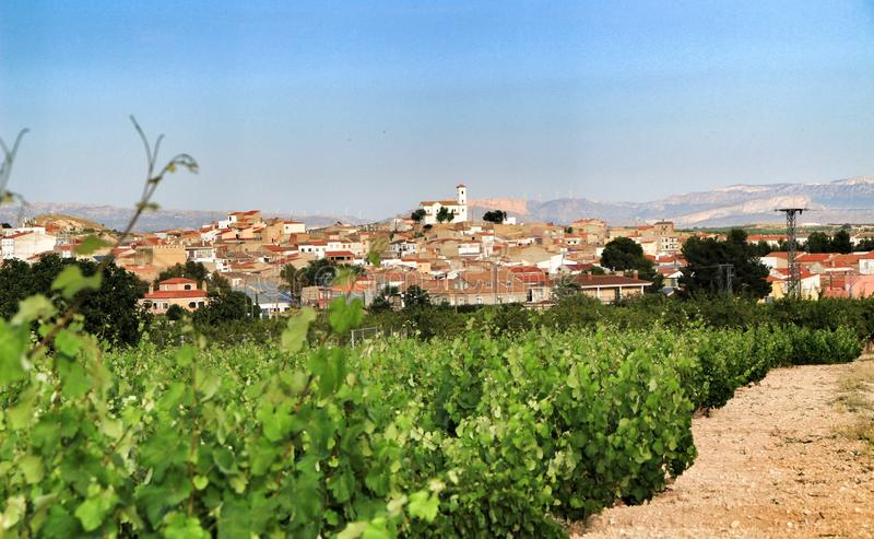 Paisagem dos vinhedos província em Jumilla, Múrcia fotografia de stock royalty free