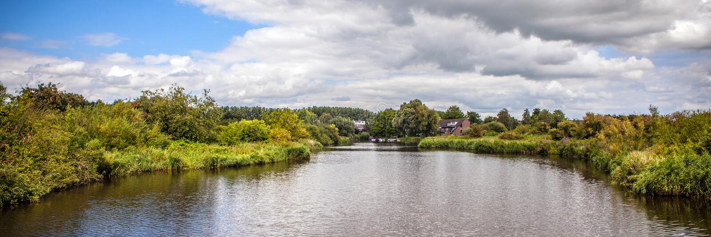 Paisagem e natureza holandesas tradicionais bonitas Panorama fotos de stock royalty free