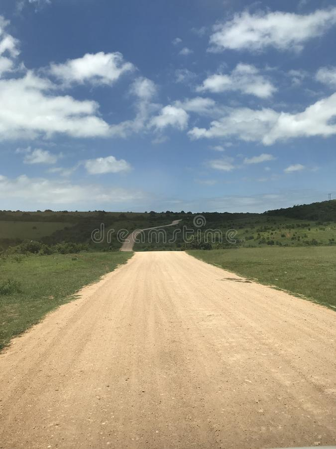 Paisagem em Addo Elephant National Park fotografia de stock royalty free