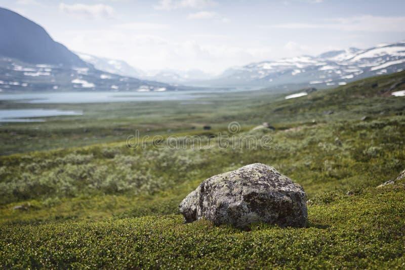 Paisagem em Lapland, Suécia fotos de stock royalty free