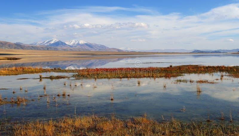 Paisagem em Mongólia ocidental foto de stock