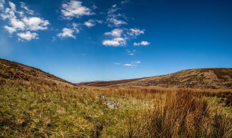 Paisagem em montanhas de Wicklow fotos de stock
