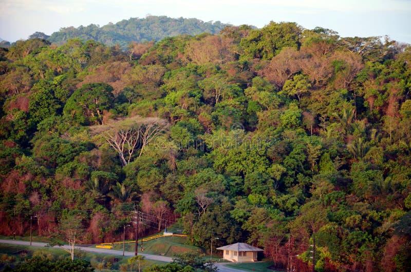 Paisagem em torno dos fechamentos de Cocoli, canal do Panam? fotografia de stock