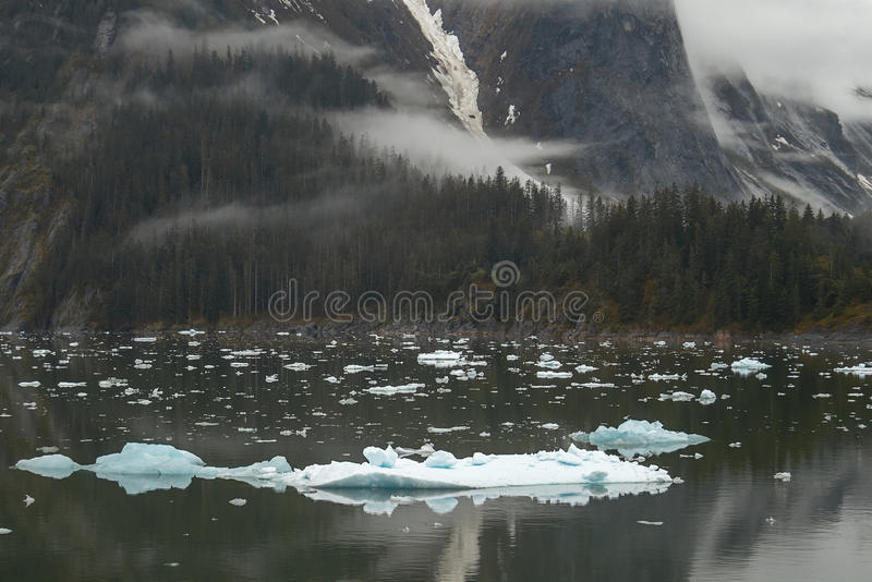 Paisagem em Tracy Arm Fjords no Estados Unidos de Alaska imagem de stock