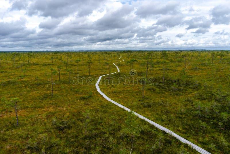 A paisagem enevoada do pântano com Viru Raba amarra na manhã Parque nacional de Lahemaa em Estônia fotografia de stock royalty free
