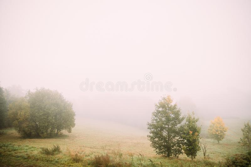 Paisagem enevoada Névoa da manhã sobre Misty Meadow Autumn Nature Of Eastern Europe imagem de stock