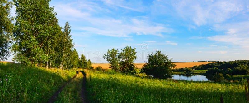 Paisagem ensolarada do verão com a estrada secundária à terra que passa através dos montes verdes e dos campos de trigo no por do imagens de stock royalty free